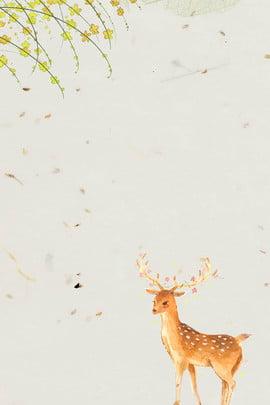 minimalist nhật bản nai sừng tấm poster mỹ phẩm , Psd, Nhật Bản, Phẩm Ảnh nền