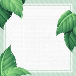 新製品 緑の葉の背景 緑の葉 緑の葉の罫線 , スキンケア製品, 新しい緑の葉の背景に新製品, 新製品 背景画像