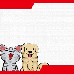 pets supplies dogs cats , Supplies, Pet, Animals Imagem de fundo