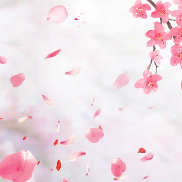 pink flower background photos vectors and psd files for free download pngtree pink flower background photos vectors