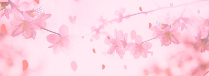 pink background pink petals beauty make up, Shop Background, Mask, Beauty Imagem de fundo
