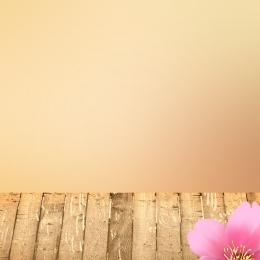 簡約背景 木板 淡雅背景 雛菊 , 直通車, 淘寶, 蜂王漿 背景圖片