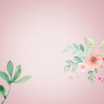 ミニマルな背景 グラデーションの背景 緑の植物 花の背景 , 靴, 緑の植物, 服 背景画像