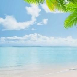 簡約背景 海邊背景 藍色大海 漂浮綠葉 , 主圖, 藍色大海, 淘寶 背景圖片