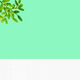 淘宝網tモール シンプルでスタイリッシュな秋の婦人服 新製品 eコマースのメインマップ , 新鮮な雰囲気, 淘宝網の女性のシンプルで新鮮なメイン画像, 新製品 背景画像