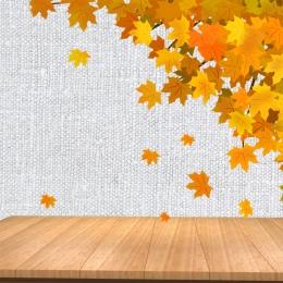 스킨 케어 메인 그림 가을 겨울 스킨 케어 배너 스킨 케어 브랜드 배너 스킨 케어 제품 포스터 , 가을, 화장품 메인 사진, 스킨 케어 브랜드 배너 배경 이미지