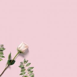 ジュエリー ブレスレット レディースアクセサリー トランスファーチェーン , ネックレス, 美しくて美しいジュエリーメイン画像, トランスファーチェーン 背景画像