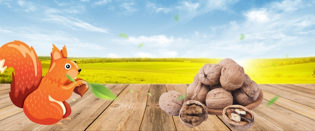 nut shop nut poster delicious nuts Đồ khô, Nut Promotion, Delicious Nuts, Lynx Nut Ảnh nền