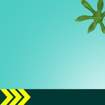 eコマース 淘宝網 ヤシの葉 緑の葉 , 靴, メンズシューズ, メイン画像 背景画像