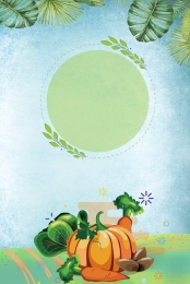 पारिस्थितिक खेत खेत सब्जियां पत्ते , आउटडोर, सब्जियां, जैविक सब्जियां पृष्ठभूमि छवि