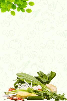farmhouse mù tạt poster trang trại rau rau xanh , Thực Phẩm Xanh, Mù, Trung Ảnh nền