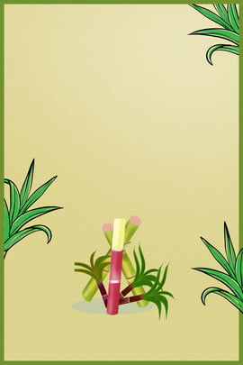 ताजा गन्ना हरी पृष्ठभूमि फल चित्र , उद्घाटन, फल, गन्ना पृष्ठभूमि छवि