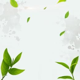 緑茶 お茶セット 緑の葉 中国風の背景 , 緑の葉, お茶セット, 白茶 背景画像