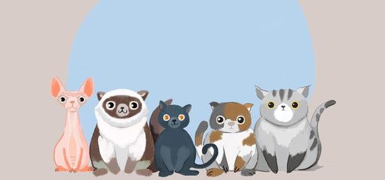 pet chó mèo vẽ tay, Xương, Pet, đường Viền Ảnh nền