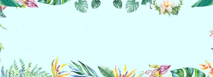 E Commerce Fashion And Beauty: ธรรมชาติ ภาพประกอบ ลม สไตล์นักวาดภาพประกอบ สด ธรรมชาติ ฤดู