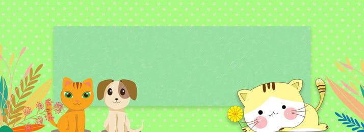 meng vật nuôi phim hoạt hình dễ thương, Ngữ, Dễ, Biểu Ảnh nền