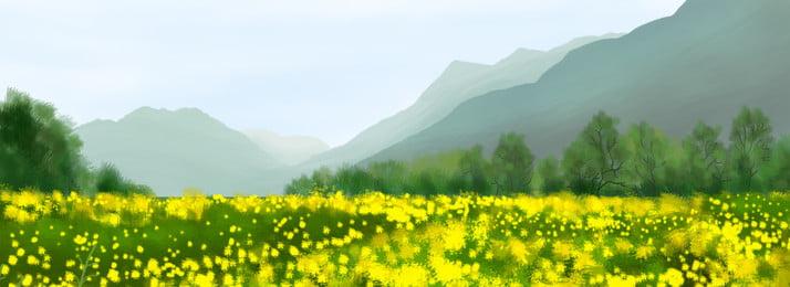 वसंत रेपसीड क्षेत्र पीला फूल समुद्र, येल्लो, हाथ खींचा, वसंत पृष्ठभूमि छवि