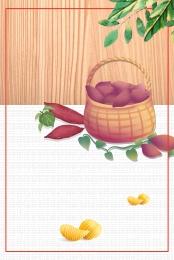 紅薯 番薯 地瓜 烤紅薯 , 番薯, 新鮮, 蒸紅薯 背景圖片