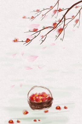 spring plum solar spring , Twenty-four, Flower, Terms ภาพพื้นหลัง