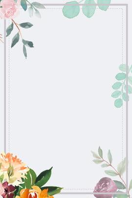 सफेद सरल वसंत नया फूल , पुष्प, नई, सरल पृष्ठभूमि छवि