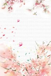 peach blossom peach blossom festival spring spring , Beautiful, Spring, Peach Blossom ภาพพื้นหลัง