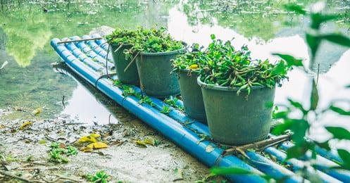 藍色 竹筏 湖 桶, 照片, 藍色, 綠色 背景圖片