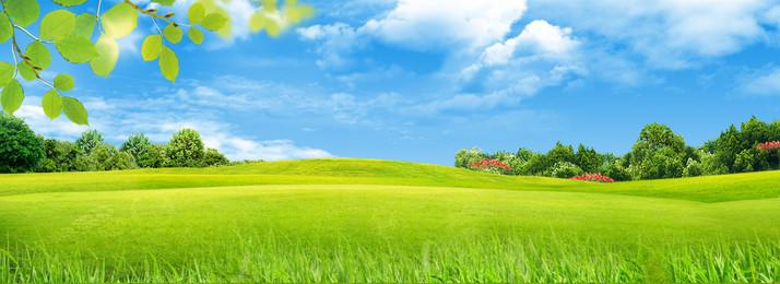 segar hijau padang rumput latar belakang langit biru, Awan Putih, Langit Biru, Ekologi imej latar belakang