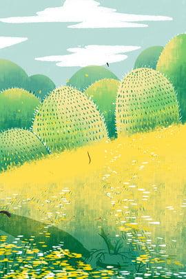 gold flowers plants green plants green ecology , Plant, Green Ecology, Free Illustration ภาพพื้นหลัง
