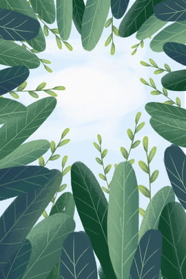 green plant leaves leaves , Leaves, Arc, Plant ภาพพื้นหลัง