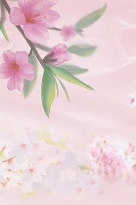 peach blossom peach blossom festival spring spring , Spring New, Flower Petals, Peach Blossom ภาพพื้นหลัง