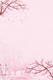 peach blossom peach blossom festival spring spring , Fresh, Peach, Spring New ภาพพื้นหลัง