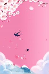 peach blossom peach blossom festival spring spring , Beautiful, Blossoms, Peach Blossom Festival ภาพพื้นหลัง