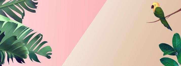 वसंत छोटे ताजा साहित्य रंग, पोस्टर, गुलाबी, साहित्य पृष्ठभूमि छवि
