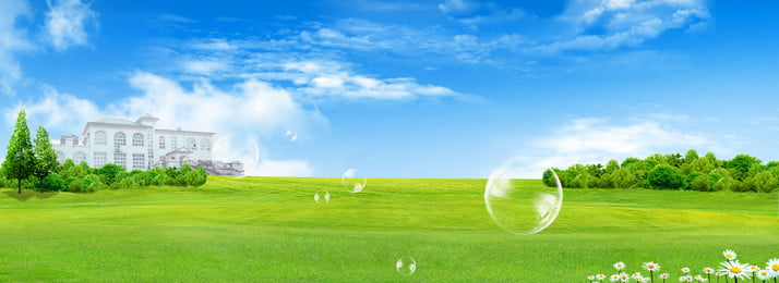 fresh summer blue sky grass, Blue, Trees, Close To Nature Imagem de fundo
