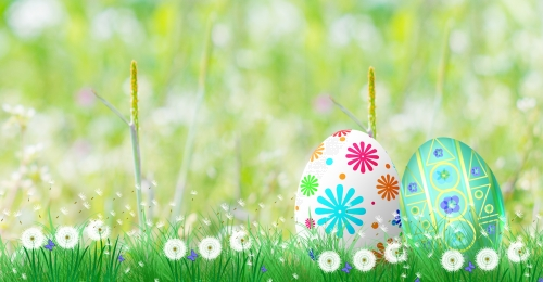 easter egg cute background, Egg, Follyday, Cute Imagem de Fundo