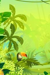 tropical rainforest woodpecker plant leaves , Leaves, Tropical Rainforest, Birds Фоновый рисунок