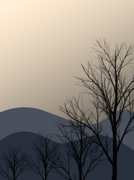 evening forest forest series mountain , Forest, Evening, Background Imagem de fundo