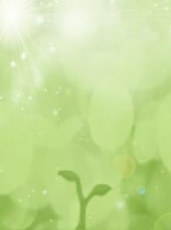 綠色 天吊旗 春姿綻放 春天 , 春姿綻放, 新芽, 小清新 背景圖片