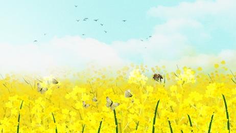 फूल समुद्र पीला रेपसीड समुद्र गर्मी, पृष्ठभूमि डिजाइन, समुद्री, पीला पृष्ठभूमि छवि