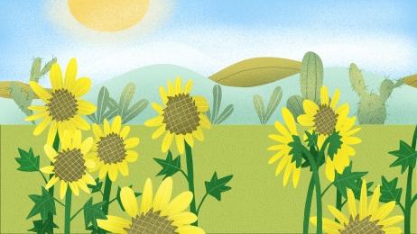 花朵 太陽花 葵花 向日葵 背景展板 向日葵 特邀背景背景圖庫