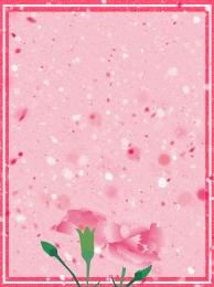 कार्नेशन मदर्स डे फीमेल वॉर्म , मदर्स, फ्लावर, बैकग्राउंड पृष्ठभूमि छवि