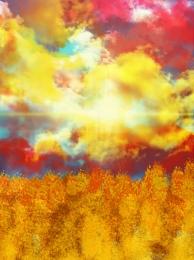 麥田 夕陽 天空 莊稼 , 自然景觀, 黃色, 天空 背景圖片