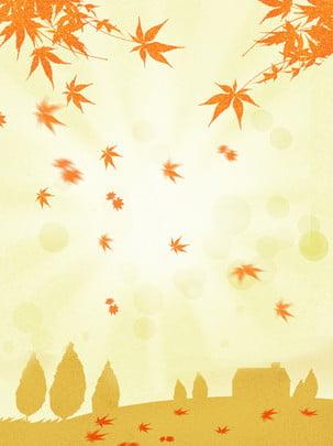 psd素材 分層素材 海報背景 黃葉 秋天楓葉 二十四節氣 秋天風景背景圖庫