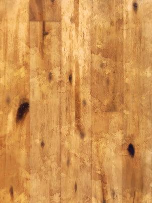 hàng rào  quỹ đạo rừng  hàng rào  nền , Cây, Lá Chắn., Hoạ Tiết Ảnh nền