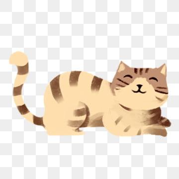 gatinho gato • animal background , Kitty, Pet, No Mercado Interno Imagem de fundo