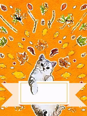 子猫動物の背景 , 子猫, 動物, 背景 背景画像