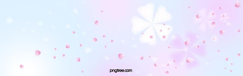 पुष्प फूल निष्क्रिय संयंत्र चेरी खिलना सुंदर रोमांटिक सपना वसंत के, पुष्प, फूल, निष्क्रिय पृष्ठभूमि छवि