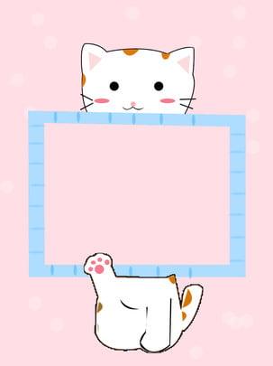 gato felino gatinho animal de estimação , Peles, Doméstico, Animal Imagem de fundo