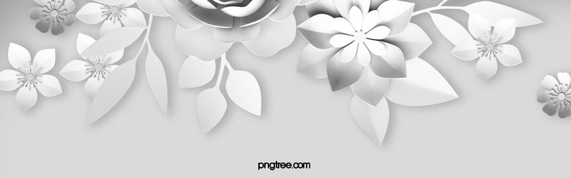 white paper cut flowers background, White, Paper, Flowers Background image