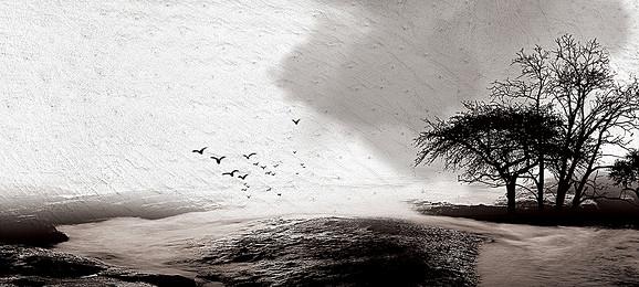 沙土灘, 海洋, 水, 假期 背景圖片